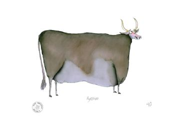 Funny Cow Cartoon Print - Ayrshire